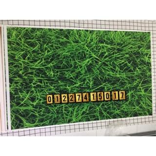 Phong nền 3D chụp ảnh mã 02 thumbnail