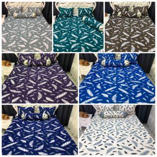 Bộ drap thun thái lan phối màu ( 7 màu)