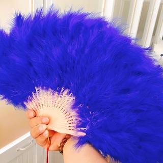 Quạt lông vũ ( đủ màu )