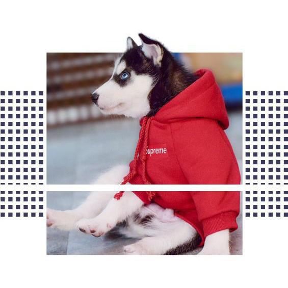 [RẺ NHẤT HÀ NỘI] Áo nỉ 2 chân Supereme dành cho thú cưng BÁN CHẠY