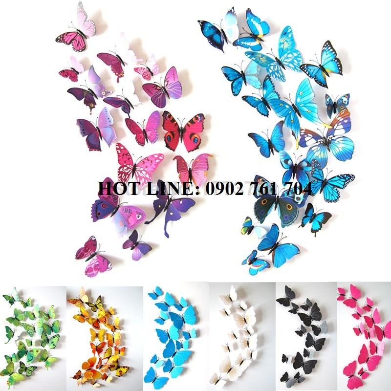 Set bướm 3D nam châm gắn tủ lạnh, dán tường - 10032108 , 162101698 , 322_162101698 , 25000 , Set-buom-3D-nam-cham-gan-tu-lanh-dan-tuong-322_162101698 , shopee.vn , Set bướm 3D nam châm gắn tủ lạnh, dán tường