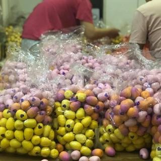 Sỉ trứng hatchimals giá rẻ 5k/50 quả giao ngẫu nhiên màu