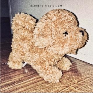 Chó bông Poodle thông minh | IWAYA_Nhật Bản
