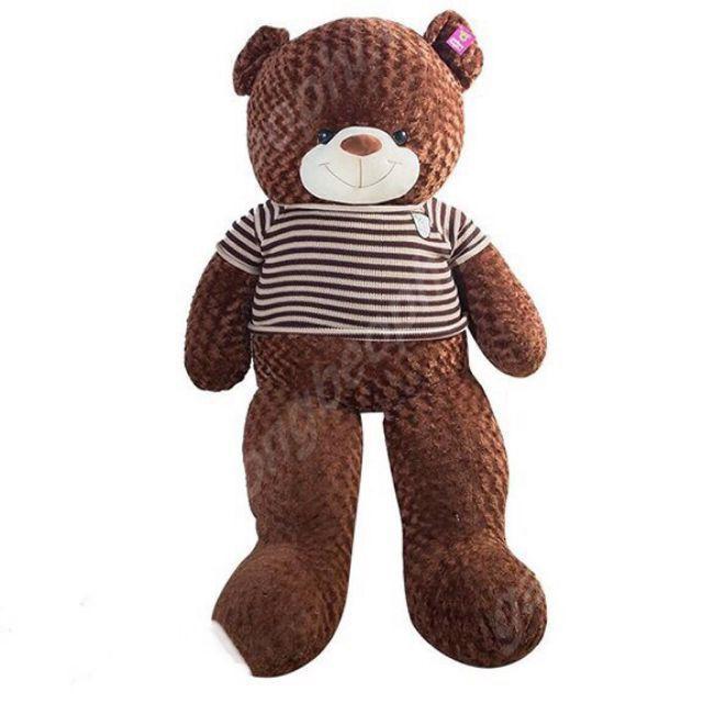 (Rẻ hủy diệt) Gấu bông Teddy 1m4 khổ vải cao cấp loại 1 cao 1m2