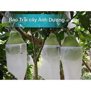 SET 10 Túi bọc trái cây 30x30,2cm bằng vải không dệt chuyên dùng bọc Xoài Cát Hòa Lộc, Xoài Đài Loan, Bưởi Năm roi - hình 2