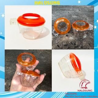 Cóng chào mào chất liệu nhựa mica họa tiết siêu đẹp Phụ kiện lồng chim Halosung PK21 thumbnail