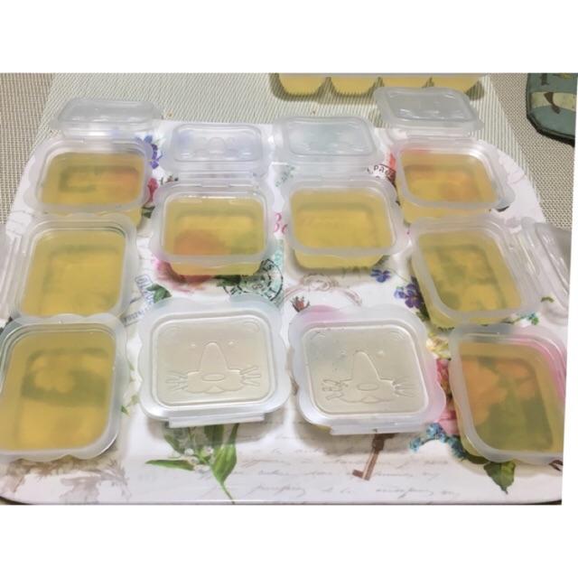 Hộp trữ đông thức ăn dặm Nhật Bản 25ml, 50ml,