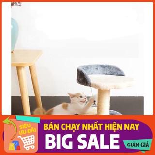 NHÀ CÂY CHO MÈO hay còn gọi là CAT TREE, một phụ kiện đồ chơi không thể thiếu cho mèo thumbnail