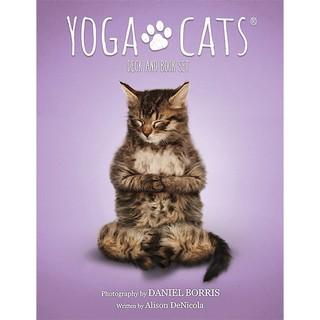 Yoga Cats Oracle (Mystic House Tarot Shop) thumbnail