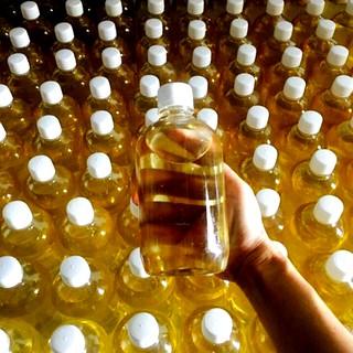 1 lít dầu dừa tự nấu nguyên chất – ĐỔ SỈ RẺ NHẤT