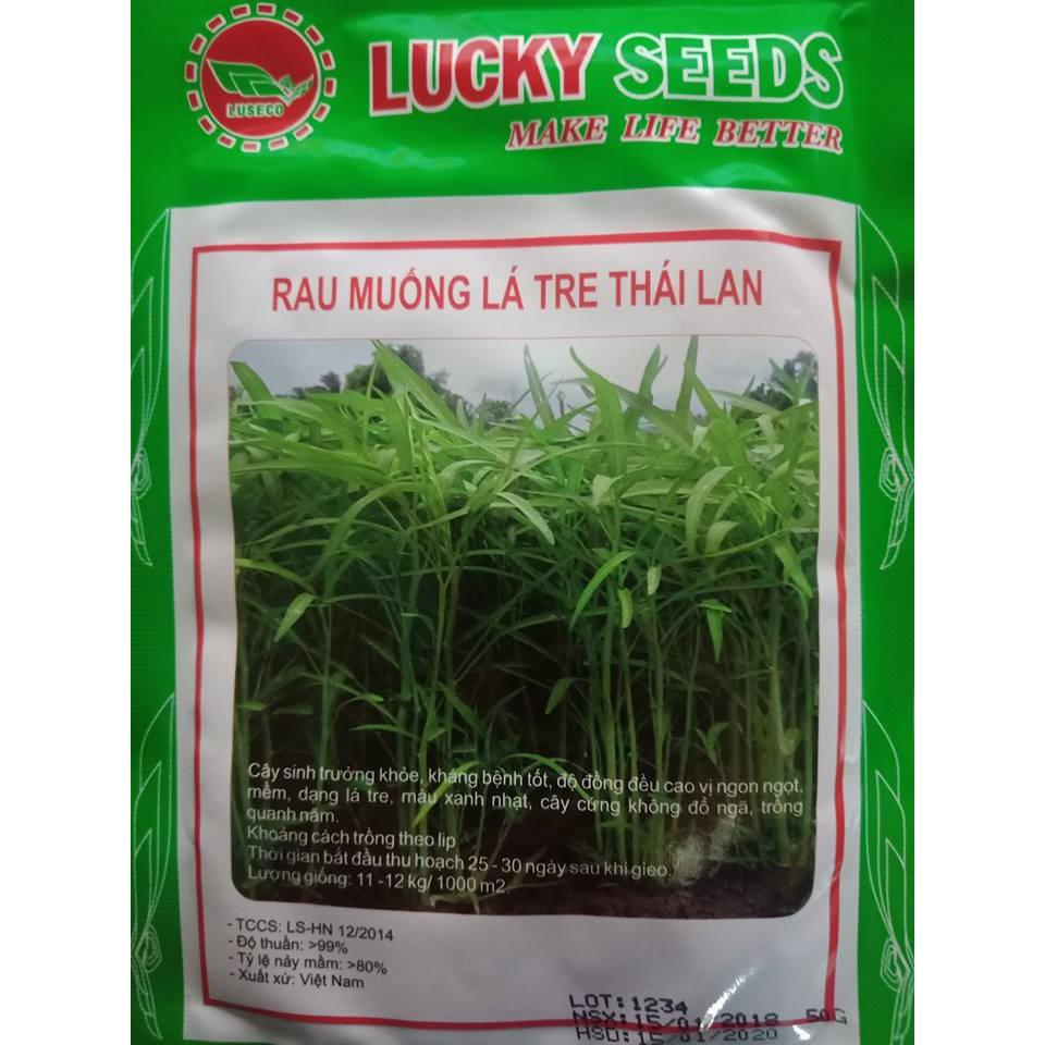 COMBO 2 gói hạt giống rau muống lá tre TẶNG 1 phân bón