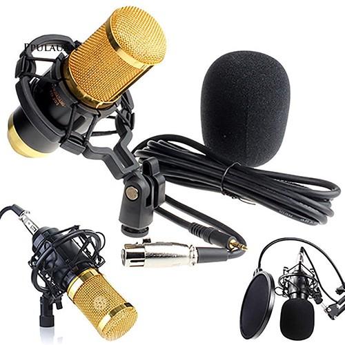 Bộ micro thu âm PPLA BM âm thanh chất lượng cao