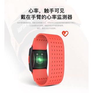 Cửa hàng chính thức của iGPSPORT Băng tay nhịp tim với giám sát dữ liệu Bluetooth ANT + thể thao chạy