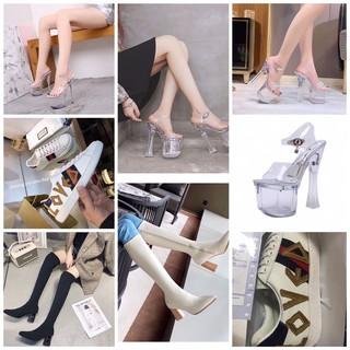 Các mẫu giày nữ hot nhất năm guốc trong suốt giày thuỷ tinh bốt da bốt thun giày đế bánh mì sneaker