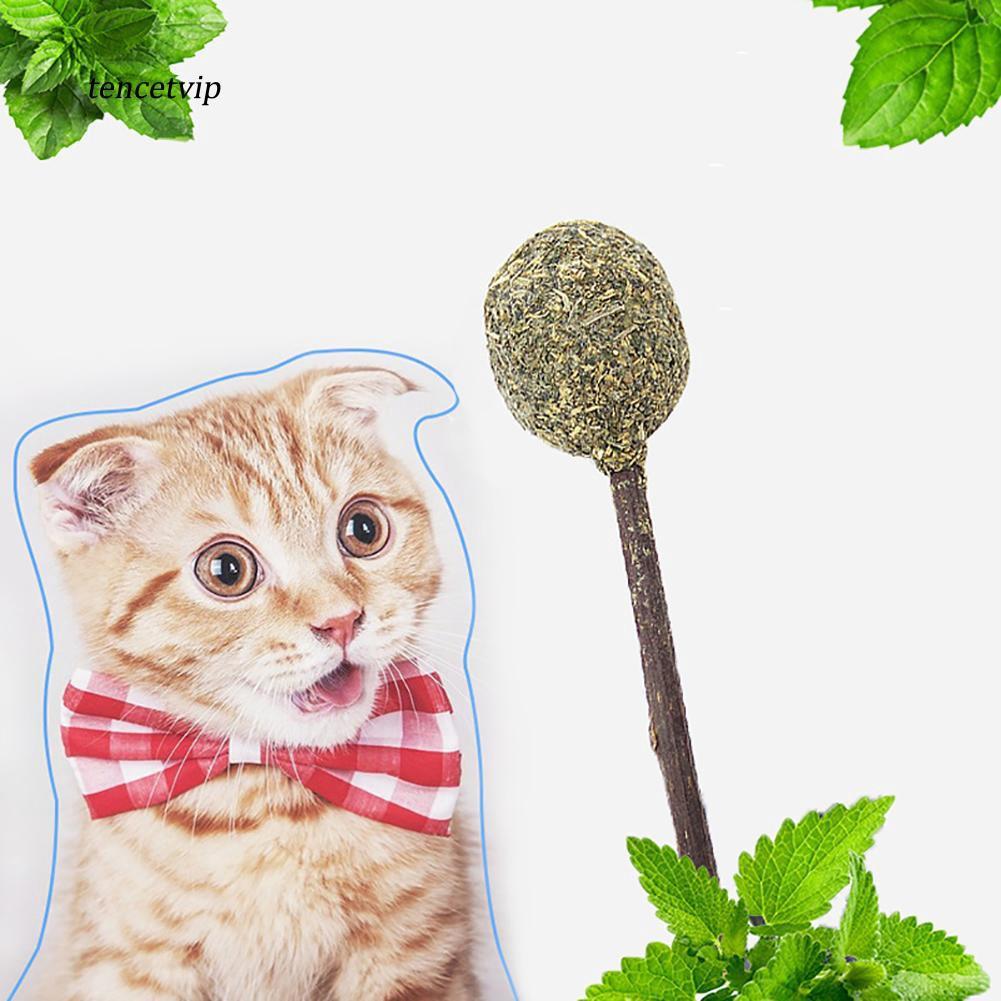 〖Vip〗Lollipop Shape Catnip Ball Cat Toy Interactive Kitten Teeth Cleaning Snack Stick