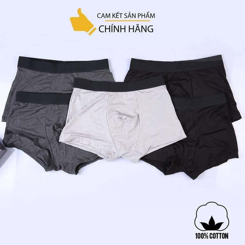 Combo 5 quần sịp nam cotton THUTU MEN vải đẹp