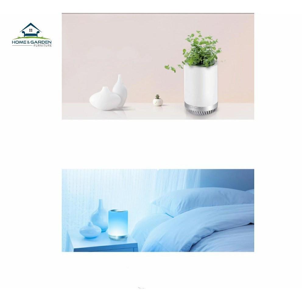 Máy lọc không khí mini trồng cây trang trí để bàn làm việc, đèn ngủ Home & Garden - 3545805 , 1017357666 , 322_1017357666 , 890000 , May-loc-khong-khi-mini-trong-cay-trang-tri-de-ban-lam-viec-den-ngu-Home-Garden-322_1017357666 , shopee.vn , Máy lọc không khí mini trồng cây trang trí để bàn làm việc, đèn ngủ Home & Garden