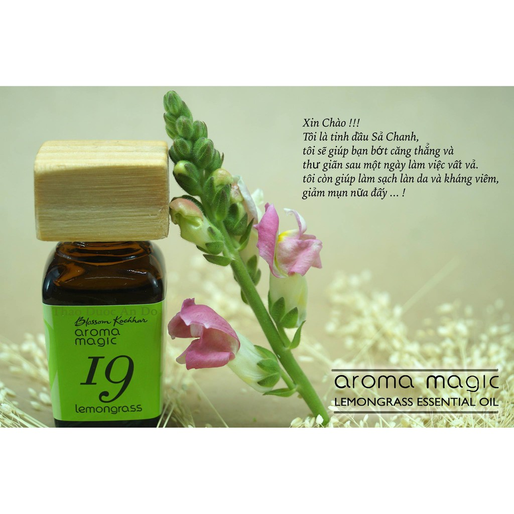 TINH DẦU SẢ CHANH của Aroma Magic