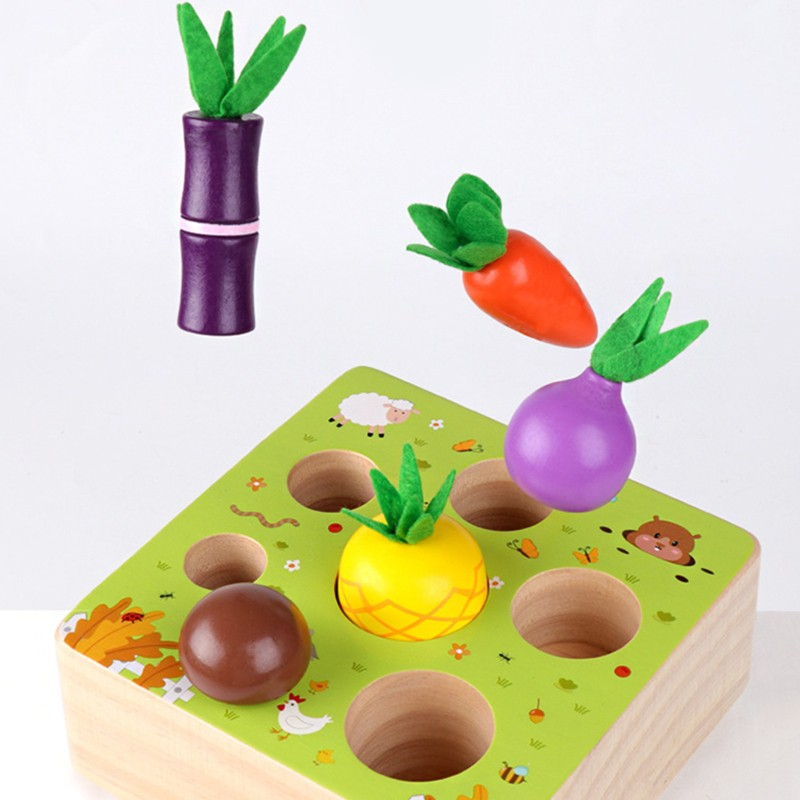 Loner Montessori Wooden Toys for 1- 2 Year Old Boys and Girls,Vegetables and Fruits Harvest Shape Size Sorting Puzzle STEM Edu
