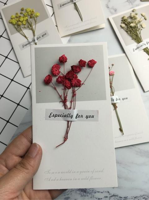 Thiệp hoa khô làm phụ kiện chụp ảnh sản phẩm