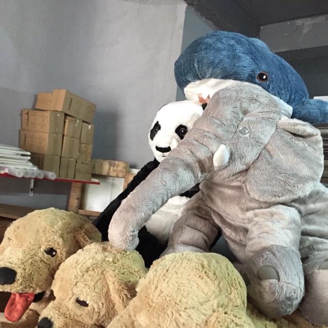 Combo voi Hàn Quốc và chó gold ikea