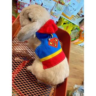 áo khoác siêu nhân Jolly dành cho thỏ - hàng HOT thumbnail