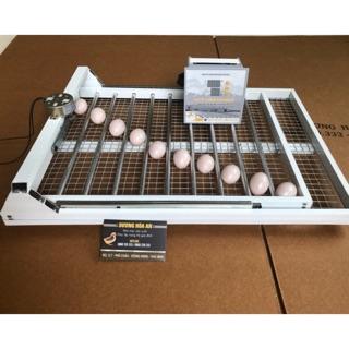 Máy ấp trứng tự động bồ câu-chim trĩ-cút -80-100 trứng
