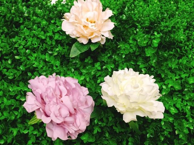 Thảm cỏ tai chuột nhựa pvc trang trí, thảm cỏ nhân tạo