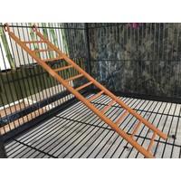 Cầu thang cho vẹt-  in 3D (37x8cm)