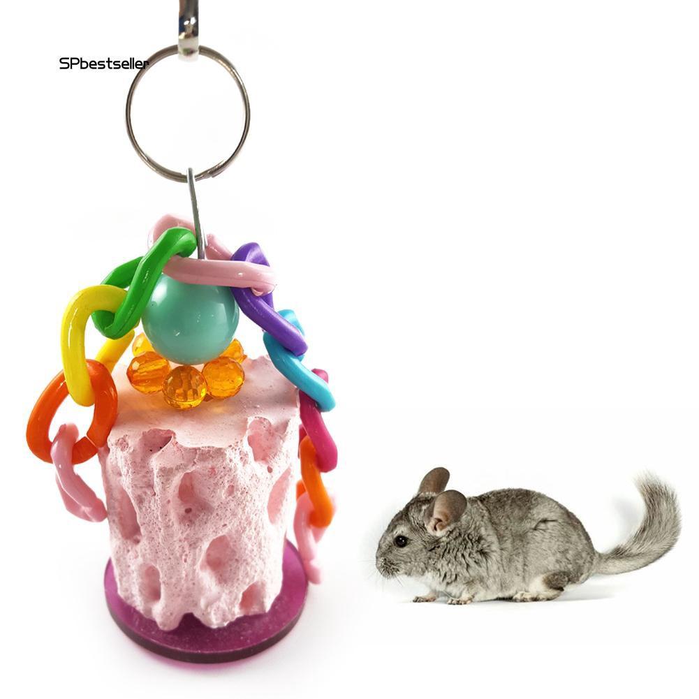 Đồ chơi gặm nhắm cho chuột hamster