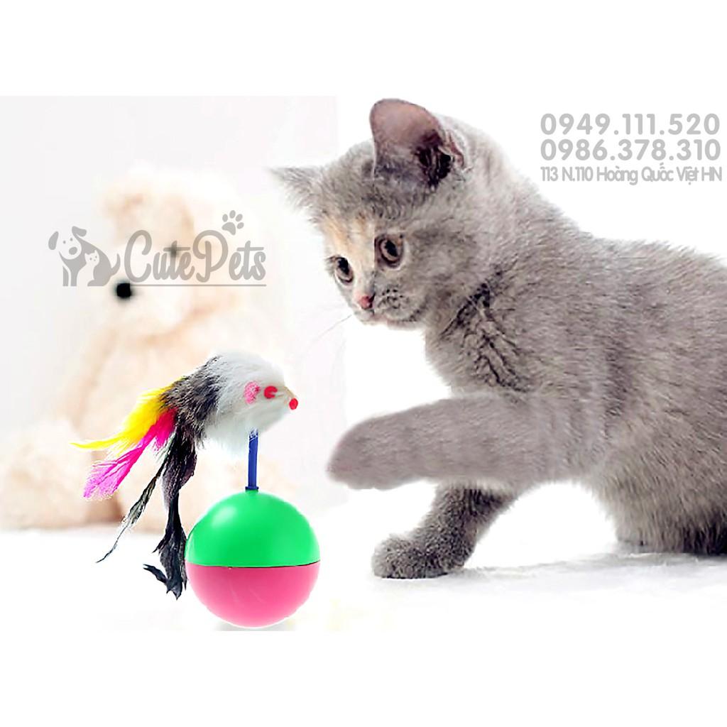 ? Đồ chơi bóng lật đật cho mèo - CutePets Phụ kiện thú cưng Pet shop Hà Nội - 3361595 , 664776867 , 322_664776867 , 25000 , -Do-choi-bong-lat-dat-cho-meo-CutePets-Phu-kien-thu-cung-Pet-shop-Ha-Noi-322_664776867 , shopee.vn , ? Đồ chơi bóng lật đật cho mèo - CutePets Phụ kiện thú cưng Pet shop Hà Nội