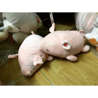 Lợn nằm