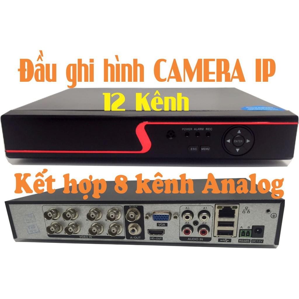 Đầu ghi hình cho camera IP Yoosee 12 kênh kết hợp 8 kênh analog - 3122165 , 1160099702 , 322_1160099702 , 950000 , Dau-ghi-hinh-cho-camera-IP-Yoosee-12-kenh-ket-hop-8-kenh-analog-322_1160099702 , shopee.vn , Đầu ghi hình cho camera IP Yoosee 12 kênh kết hợp 8 kênh analog