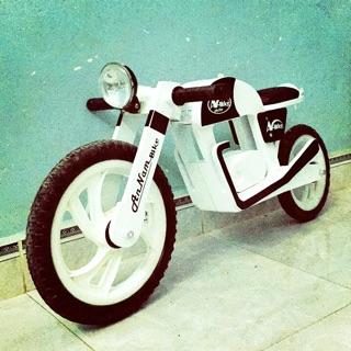 Xe thăng bằng AnNam-Bike