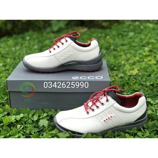 Giày Golf Ecco dây buộc ( freeship ) (chính _ hãng )