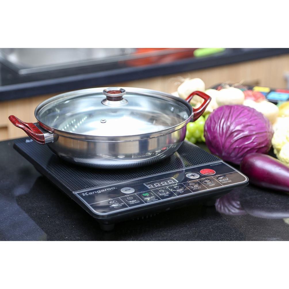 Bếp từ Kangaroo-KG365i
