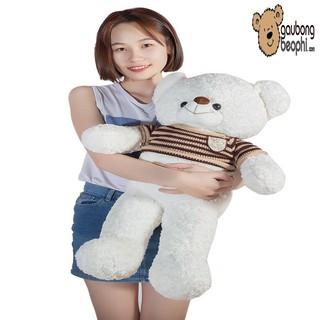 [ SIÊU HOT ]Gấu teddy áo len cao cấp màu trắng khổ vải 80cm