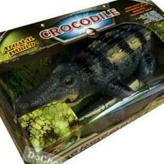 Cá sấu pin nhạc đèn size to