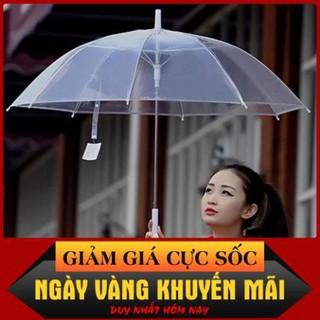Ô dù đi mưa trong suốt màu trắng