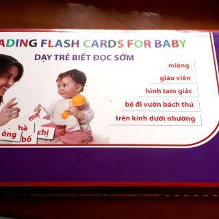 Bộ flash card tiếng Việt (đầy đủ) theo Phương Pháp Glenn Doman