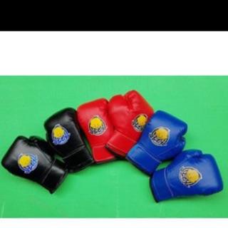 Găng tay boxing cho trẻ em( trừ 4 đến 12t )