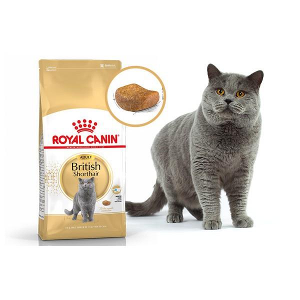 Thức ăn cho mèo trưởng thành Royal Canin British Shorthair Adult 2kg - 15422625 , 1805285092 , 322_1805285092 , 438000 , Thuc-an-cho-meo-truong-thanh-Royal-Canin-British-Shorthair-Adult-2kg-322_1805285092 , shopee.vn , Thức ăn cho mèo trưởng thành Royal Canin British Shorthair Adult 2kg