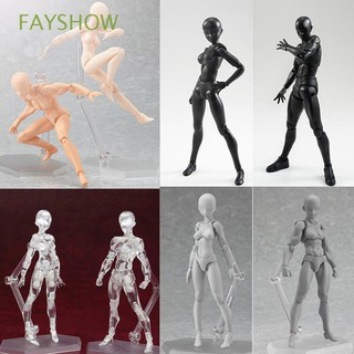 Box-packed Drawing PVC Male&Female Collections Figma Movable Body