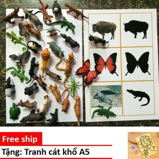 Mô hình động vật Safari có hộp đựng