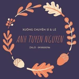 Ánh Tuyền Nguyễn.