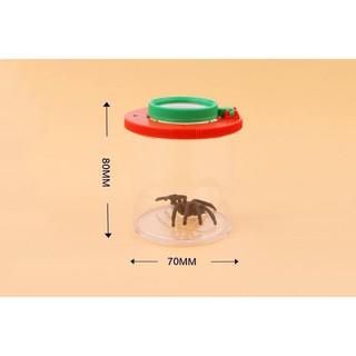 Hộp quan sát côn trùng