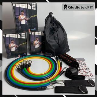 Bộ dây ngũ sắc tập gym chính hãng ⭐ Free Ship ⭐ đàn hồi cao cấp