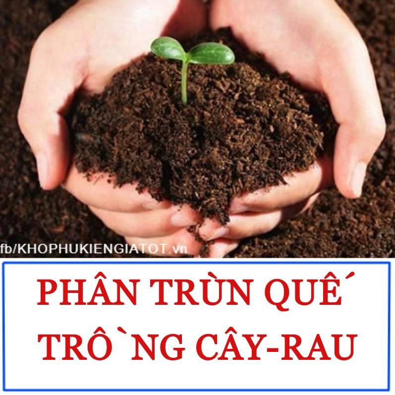 Phân trùn quế ẩm dinh dưỡng, phân bón hữu cơ trồng cây, trồng rau, cây cảnh nội thất, cây hoa kiểng