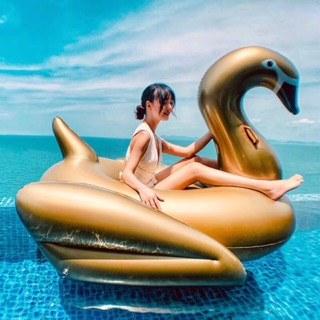 Thiên Nga Vàng Gold Kèm Bơm Điện + Phao Mini