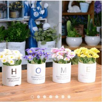 Bộ chậu cây HOME để bàn - bộ hoa cúc - 3058384 , 407029336 , 322_407029336 , 320000 , Bo-chau-cay-HOME-de-ban-bo-hoa-cuc-322_407029336 , shopee.vn , Bộ chậu cây HOME để bàn - bộ hoa cúc